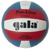 Míè volejbal PRO-LINE BV5211L