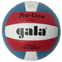 Míč volejbal PRO-LINE BV5211L
