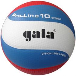Volejbalový míč GALA Pro-line č.5