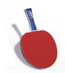 Pálka stolní tenis RICHMORAL MASTER *** S100