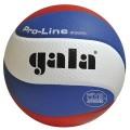 Míè volejbal PRO-LINE GALA PROFI 5591S